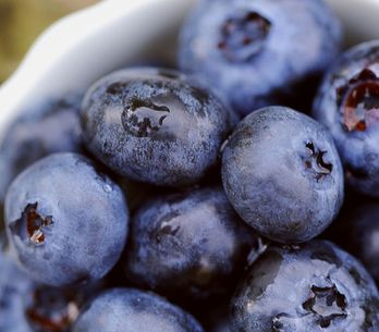 The 10 Best Calming Foods To Find Some Zen In Your Life