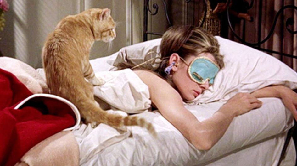 17 Reasons Your Cat Is Better Than Your Boyfriend