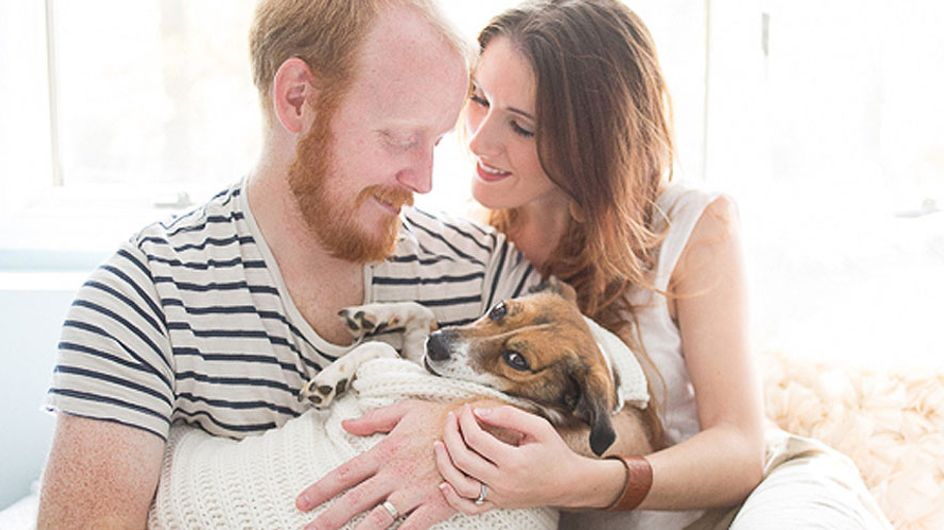 Forget Babies. This Newborn Style Photo Shoot Starring A Dog Is The Cutest