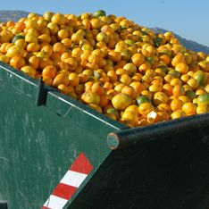 Is This The Best Way To End Food Waste?