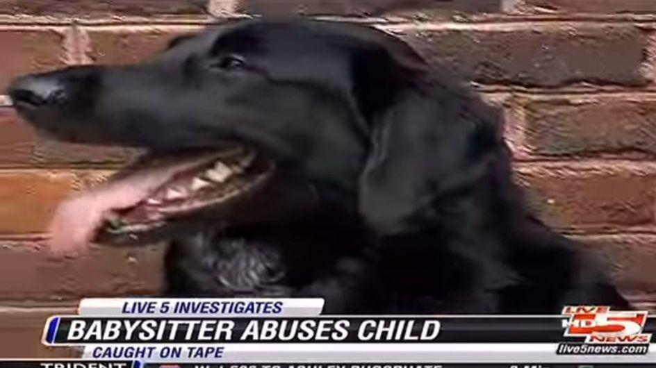 Finn hat eine neue Babysitterin. Doch plötzlich schlägt der Familienhund Alarm! Die schlimmste Vermutung wird wahr ...