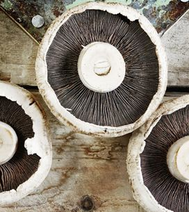 The Undervalued Superfood: 11 Amazing Health Benefits Of Mushrooms
