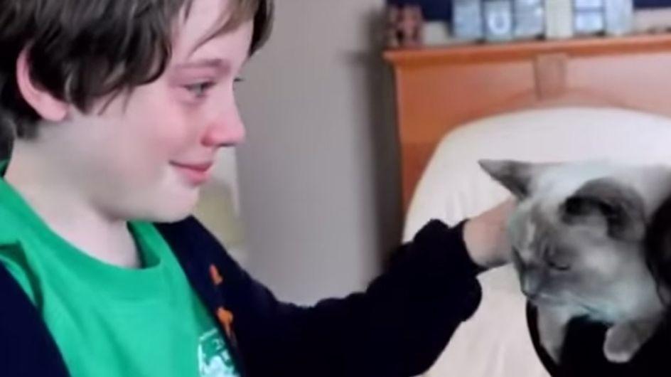 Das ist Freude pur! Zwei Monate war die Katze der Jungs verschwunden. Dann hat ihre Mutter eine riesengroße Überraschung!