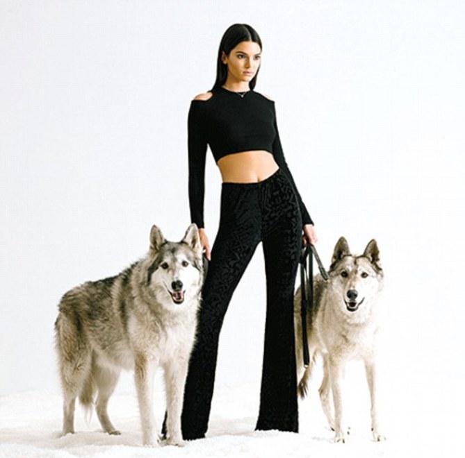Kendall Jenner pour PacSun