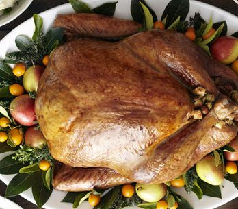12 Finger-Licking Ways To Eat Turkey This Season