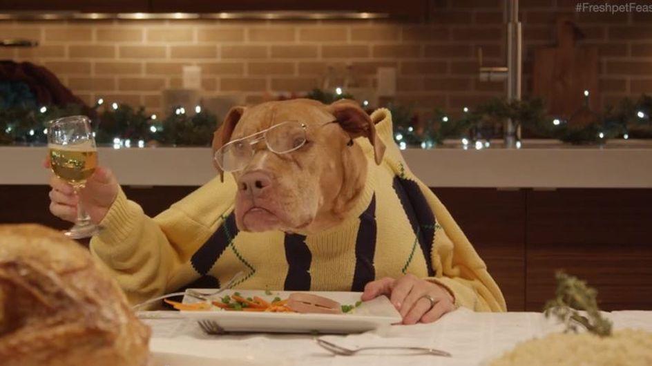 Marca americana de ração cria o comercial mais fofo que você verá neste fim de ano