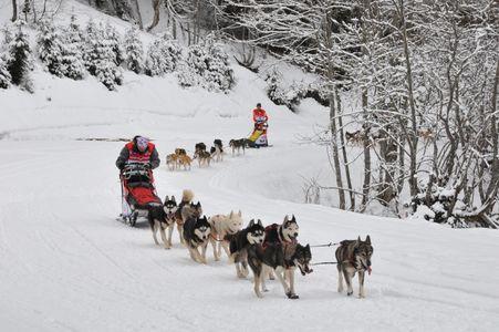 La grande odyssée Savoie Mont Blanc