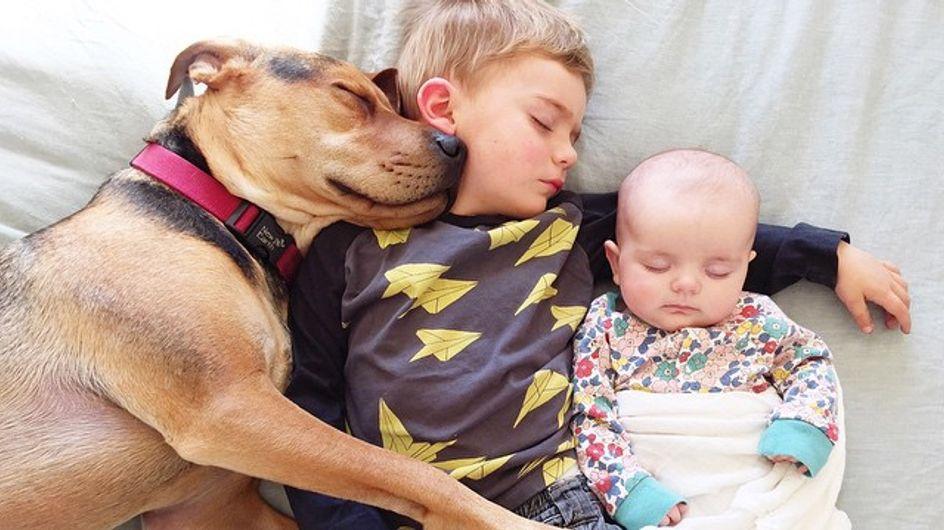 Beau et Theo, le bébé et le chien inséparables, ont un nouveau compagnon de dodo