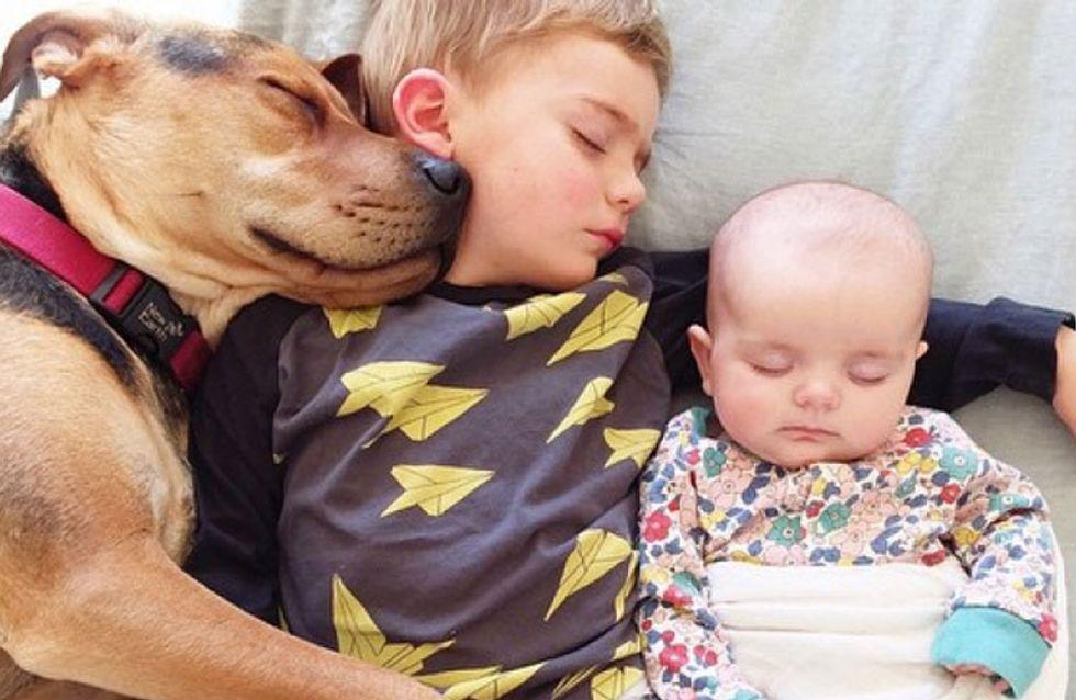 La entrañable historia de dos niños y su perrito contada en imágenes