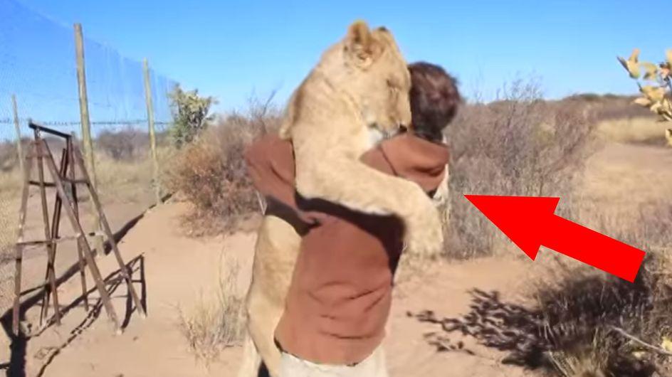 Der Löwenflüsterer: So etwas habt ihr noch nicht gesehen!