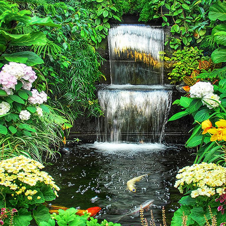 ma jardini re de balcon choisir les plantes d 39 hiver et. Black Bedroom Furniture Sets. Home Design Ideas