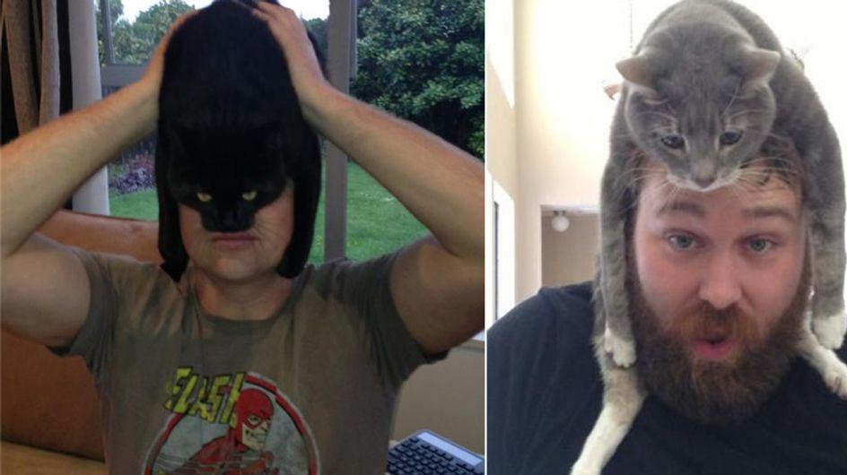 Schicker Hut! Ach nein, das ist ja eine Katze! Die witzigsten Bilder für Katzen-Fans