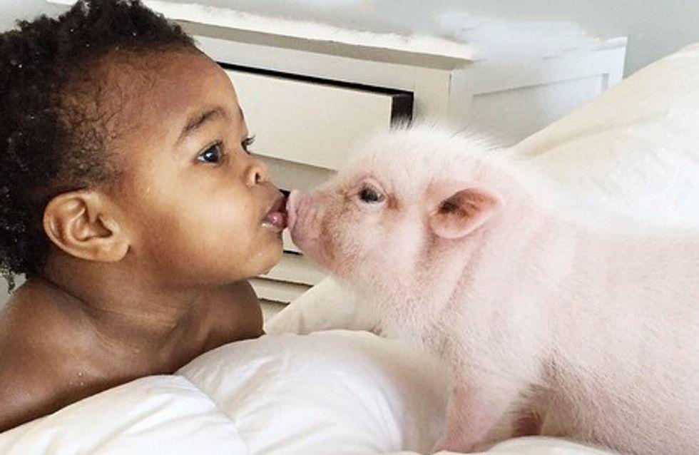 Diese Freundschaft zwischen Libby & ihrem Schweinchen ist wirklich einmalig ♥