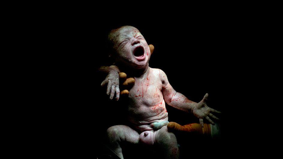 Ces bébés ont été photographiés quelques secondes après leur naissance