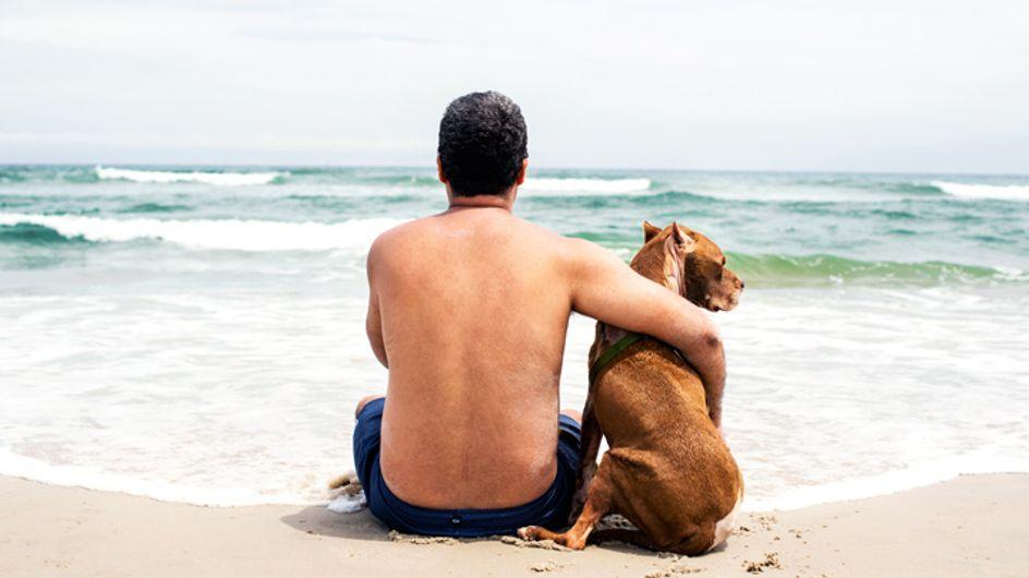 Sein letztes Mal am Meer: So nimmt diese Familie Abschied von ihrem sterbenden Hund