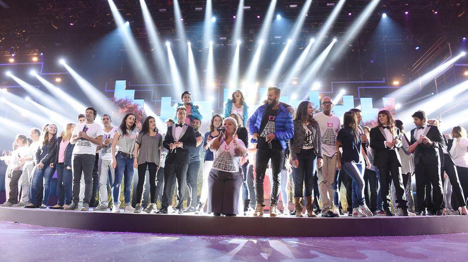 Les Enfoirés : Certains artistes avouent ne pas apprécier la chanson polémique