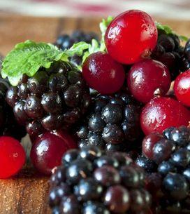 Lamponi, more, mirtilli, ribes e fragoline di bosco: scopri tutte le proprietà d