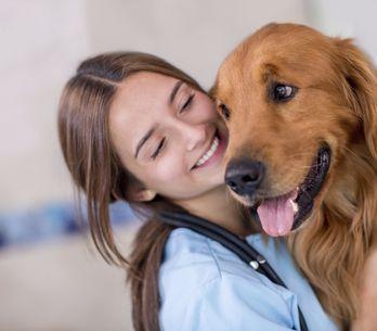 10 trucs qui prouvent qu'entre ton chien et toi, c'est fusionnel