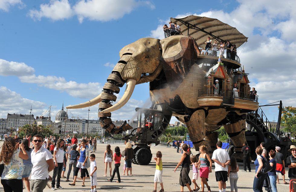 Et si on allait visiter un éléphant à Nantes ?