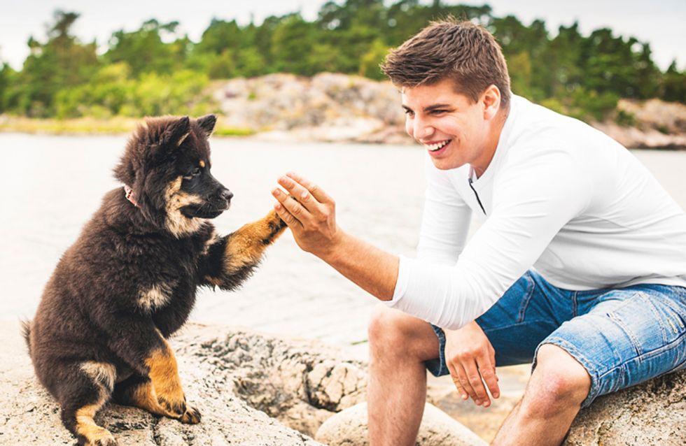 Guapetones y perritos, la mejor combinación en Instagram