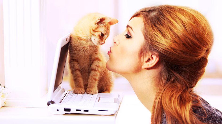 Ter um gato é melhor do que ter um namorado. E nós temos provas!