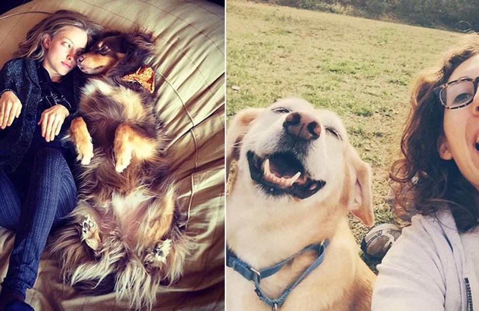 Tierische Gemeinsamkeiten: SO sieht es aus, wenn Besitzer und Haustier sich extrem ähnlich sind