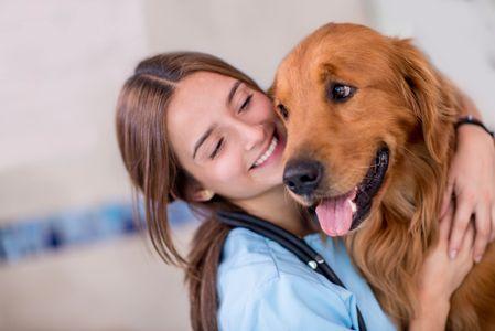 Le chien utile pour la détection de cancer