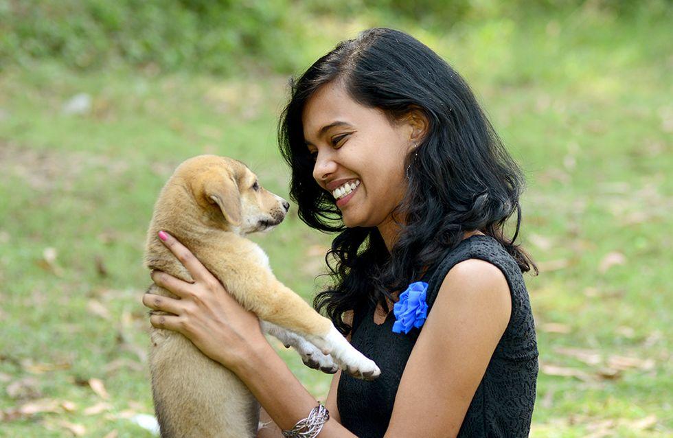 Universidade disponibiliza quarto com cachorrinhos para ajudar alunos estressados