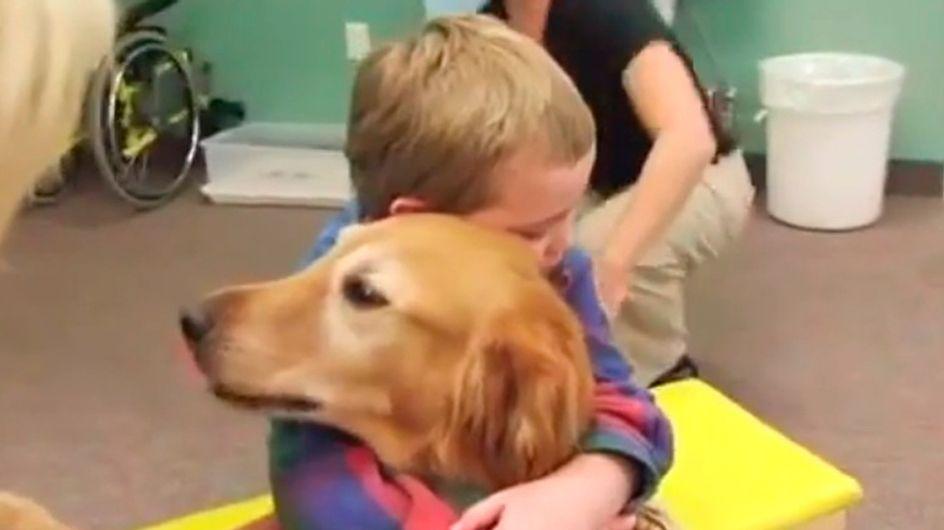 """[Vídeo] Un perro logra """"devolverle"""" la vida a un niño después de un accidente que le provocó un daño cerebral"""