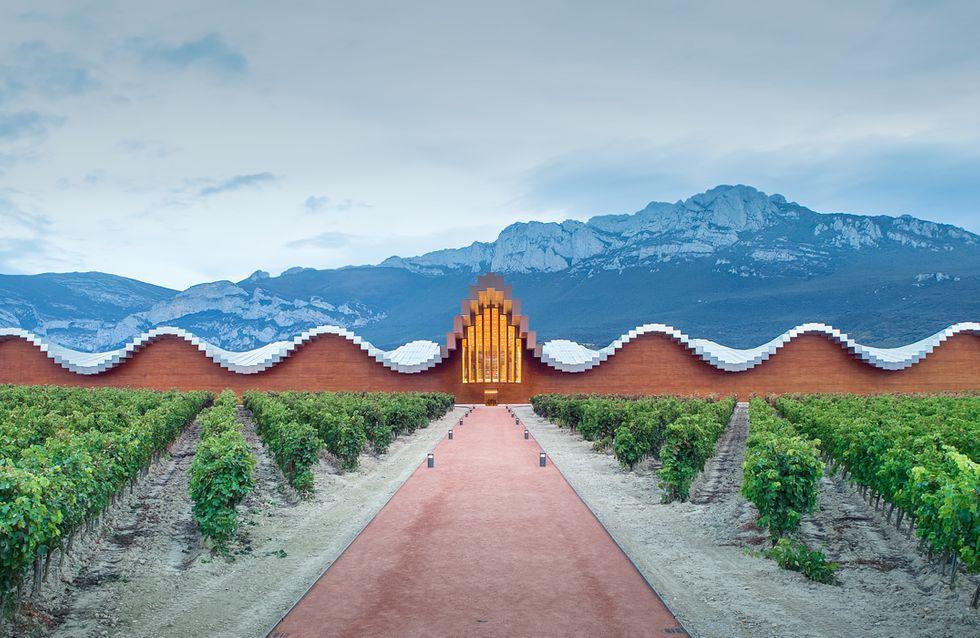 Escapadas con encanto: La Rioja Alvesa y sus vinos rodeados de vanguardia