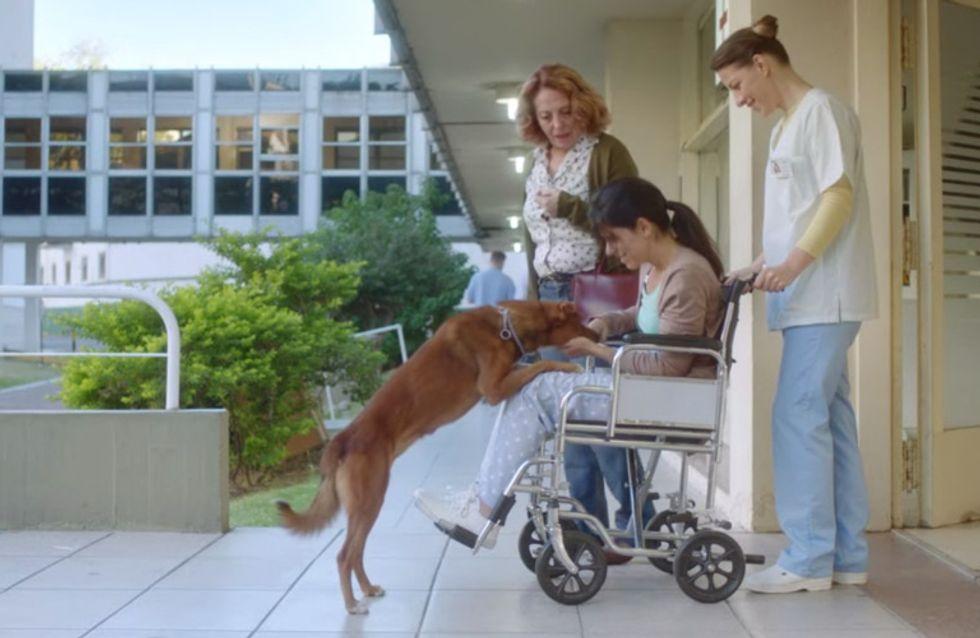 Traurig und schön zugleich: Dieses ergreifende Video zeigt, wie wichtig Organspende ist