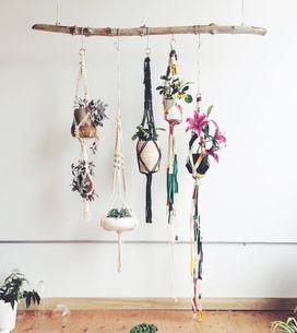 Green at home : 25 idées pour un intérieur plus vert