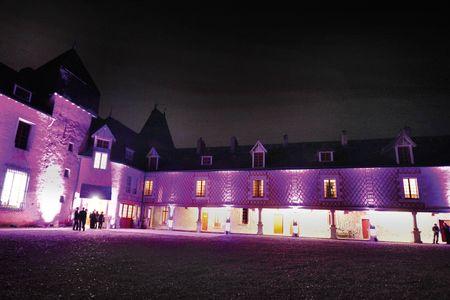 Le château de Mothe en Poitou