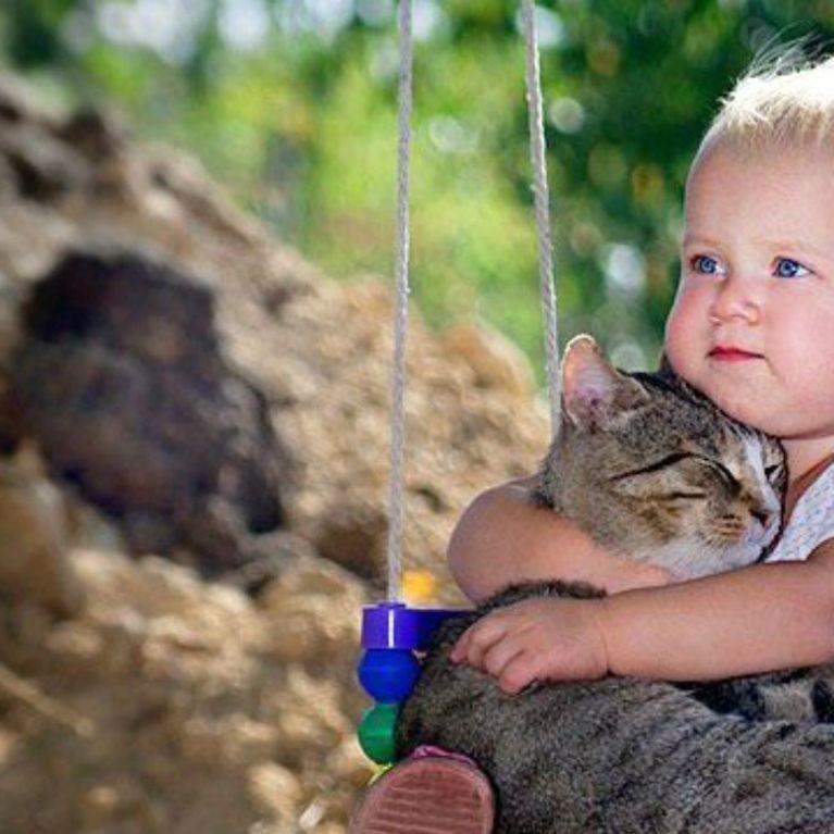 09a3c0e6d4536 20 photos qui prouvent que votre enfant doit ABSOLUMENT vivre avec un chat