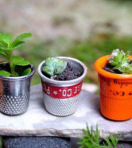 25 ideas mini para decorar tu casa con plantas
