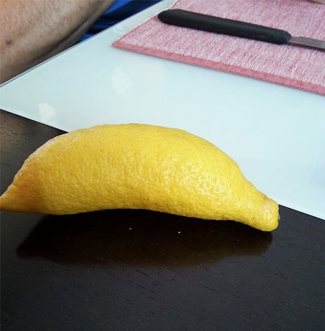 Limão em formato de banana
