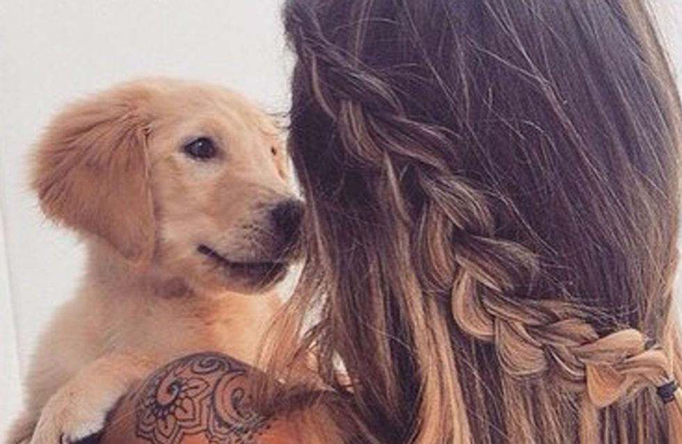 17 Things You Should Never Say To A Dog Lover