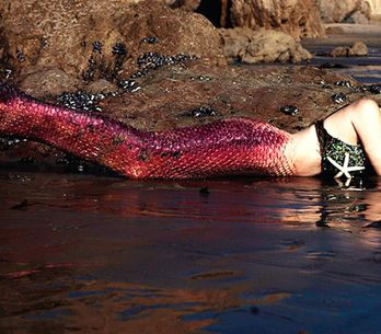 Project Mermaids: mulheres viram sereias em projeto que visa salvar os oceanos