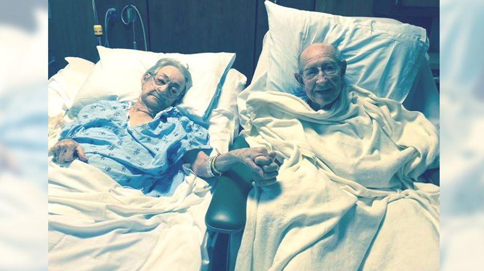 Seit 50 Jahren können sie nicht mehr ohne einander – doch dann werden sie getrennt