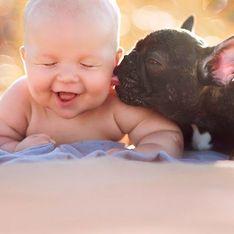 Bebê e bulldog francês que nasceram no mesmo dia vivem como irmãos