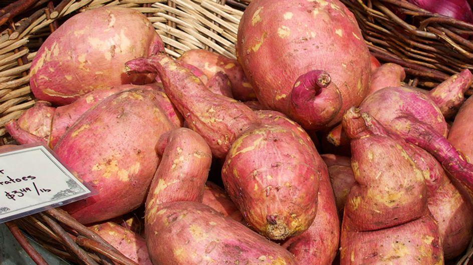 Sobre a batata-doce e seu fantástico leque de propriedades