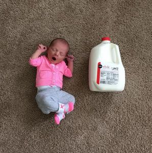 Baby vs. Milch