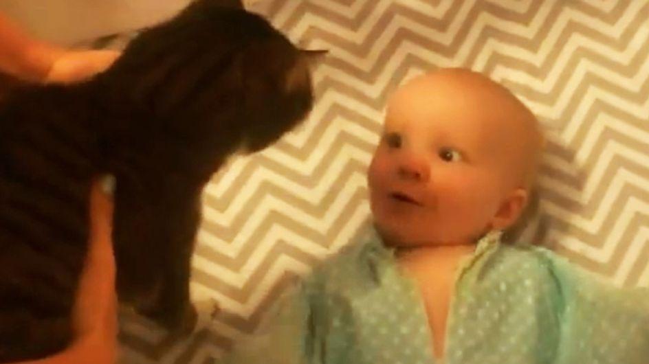 DAS ist pure Freude: Als dieses Baby die Familienkatze trifft, kennt es kein Halten mehr