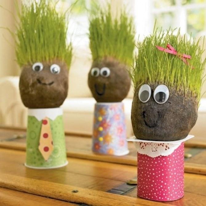 Plantar semillas dentro de cocos