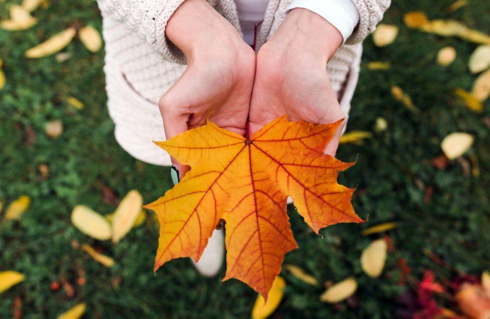 10 phases que toutes les Québécoises traversent en automne