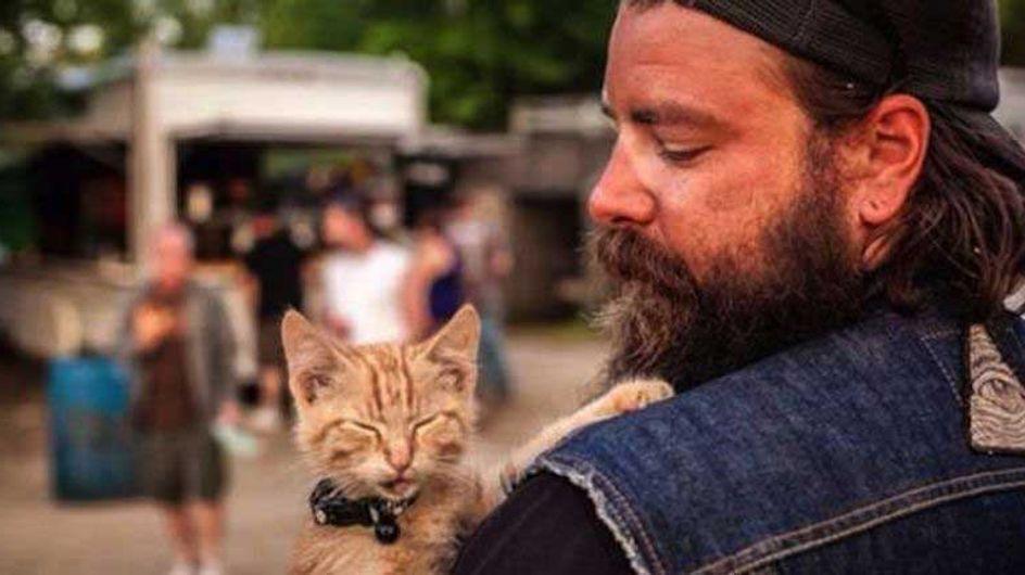 Il sauve un chat abandonné et l'emmène avec lui faire le tour des Etats-Unis