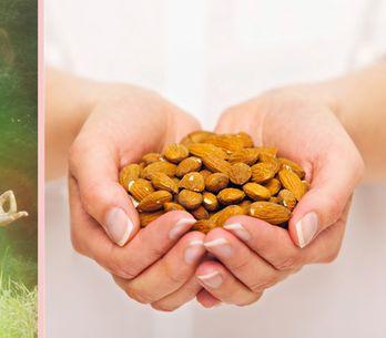 Gesundheitstrend aus Fernost: Makrobiotische Ernährung fürs innere Gleichgewicht