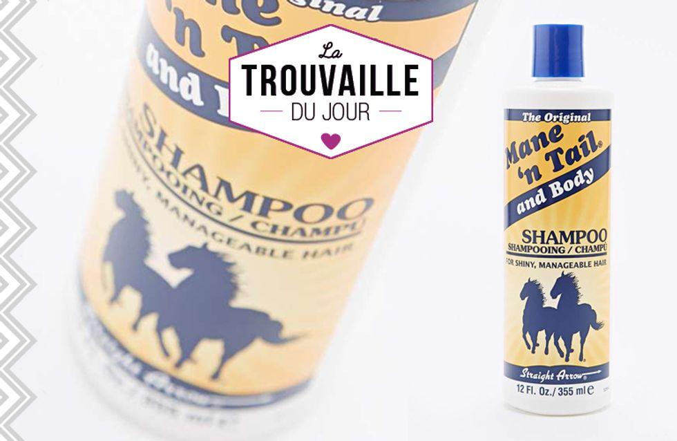 Ce shampoing pour les chevaux que les stars s'arrachent