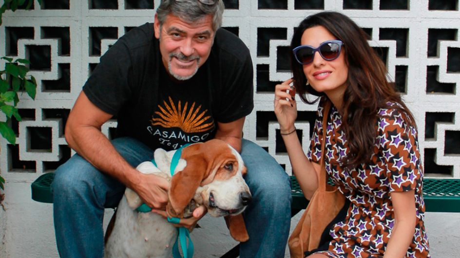 A família de George e Amal Clooney cresceu! (calma, não é o que você está pensando)