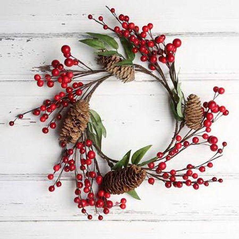 Plantas De Navidad Descubre Sus Curiosidades Y Cuidados